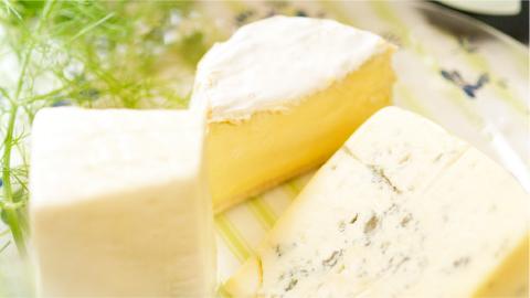 チーズのお勉強会